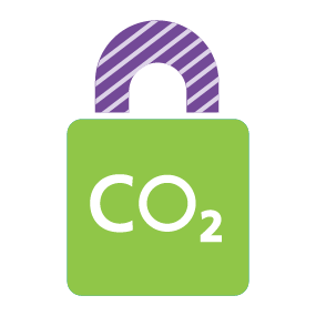 Carbon capture usage and storage (CCUS)